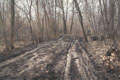 Brudna jesieni droga w lesie fotografia stock