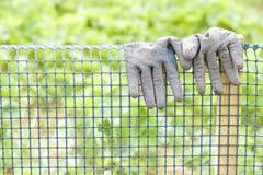 Brudne ogrodowe rękawiczki na klingerytu ogrodzeniu Obraz Royalty Free