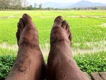 Brudnego footman Brudny zbliżenie Obraz Royalty Free