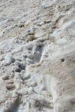 brudny śniegu toru Obraz Royalty Free