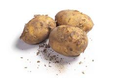 brudny potato stark Obrazy Royalty Free