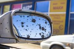 Brudny samochodowy tylni widoku lustro fotografia royalty free