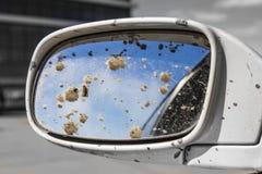 Brudny samochodowy tylni widoku lustro zdjęcie royalty free