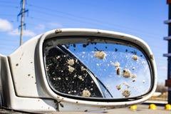 Brudny samochodowy tylni widoku lustro zdjęcie stock
