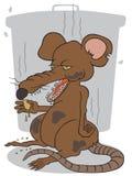 Brudny szczur Obraz Royalty Free