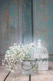 Brudslöja (gypsophiliapaniculata) på träbakgrund Fotografering för Bildbyråer