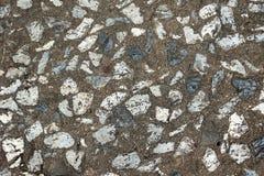 Brudzi cementową wapień podłoga teksturę Obraz Royalty Free