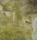 Brudzi przetartą zieloną grunge ścianę Obraz Royalty Free