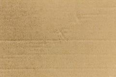 Brudzi pudełkowatą teksturę Obraz Royalty Free