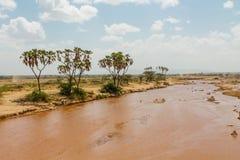 Brudzi wodną rzekę w pustyni, Afryka Zdjęcia Royalty Free