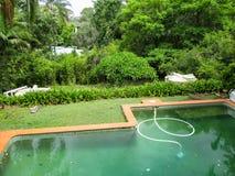 Brudzi zielonego pływackiego basenu z próżnią w nim w bardzo zielonym tropikalnym położeniu z dachami inni domy pokazuje przez dr zdjęcie royalty free
