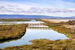 Brug in Alviso-Moeras, Don Edwards-het wildtoevluchtsoord, baai de Zuid- van San Francisco, San Jose, Californië stock fotografie