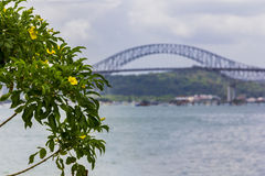 Brug boven het Kanaal van Panama Stock Fotografie