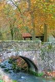Brug in de Herfst Stock Foto