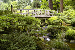 Brug in de Japanse Tuin van Portland Stock Foto