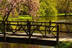 Brug in het park Stock Foto