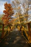 Brug in het park Stock Foto's