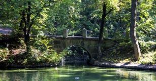 Brug met traliewerk boven rivier in park onder bomen Uman Ukr stock afbeelding