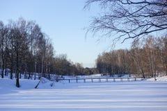 Brug op een bevroren die rivier met ijs en sneeuw wordt behandeld De winter stock afbeelding