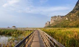 Brug op het meer in nationaal park Royalty-vrije Stock Foto's