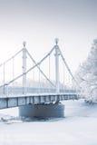 Brug over bevroren rivier en bomen in rijp Fijn art. stock fotografie