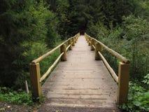 brug over de bergrivier in het Karpatische bos stock foto's