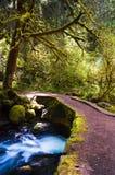 Brug over het hoofdwater van Dalingen Multnomah Royalty-vrije Stock Foto's