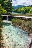 Brug over het kreek duidelijke turkooise meer op de achtergrond Plitvice, Nationaal Park, Kroatië stock afbeelding