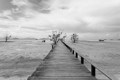 Brug over het overzees tijdens eb in zwart-wit stock afbeeldingen