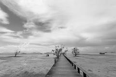 Brug over het overzees tijdens eb in zwart-wit royalty-vrije stock afbeelding