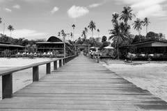 Brug over het overzees tijdens eb in zwart-wit stock foto's