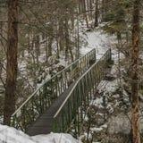 Brug over Hornad-rivier in het Paradijs van Slowakije stock afbeeldingen