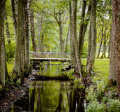 Brug over kanaal in het park Stock Foto