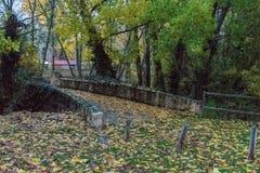 Brug over rivier met bladeren van bomen wordt behandeld die stock foto's