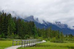 Brug in park in Canmore, Alberta, Canada royalty-vrije stock fotografie