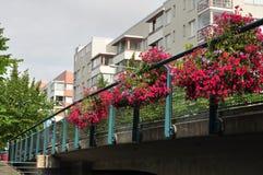 Brug in Ruoholahti met roze bloemen vooraan Stock Foto's