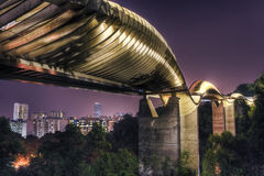 Brug in Singapore: De Golven van Henderson Stock Afbeeldingen