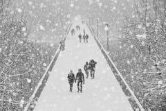 Brug van Sneeuw in Kaunas royalty-vrije stock afbeeldingen