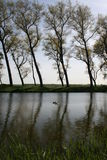 Bruge Kanal-Baumansicht lizenzfreie stockbilder