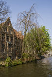 Bruges. Houses and trees in Bruges, Belgium Royalty Free Stock Image