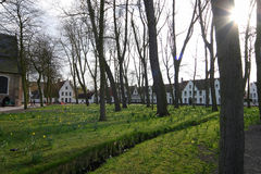 Bruges - The Beguinage. (Begijnhof). It is one of those typical areas in Bruges where one can find more peace and quiet than in the sometimes busy and Stock Photo