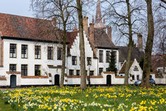 Bruges beguinage Stock Images