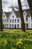 Bruges beguinage in spring Royalty Free Stock Photo