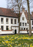 Bruges beguinage in springtime Royalty Free Stock Photos