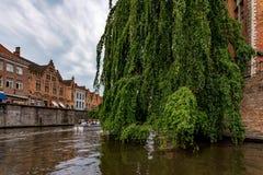 BRUGES BELGIEN - JUNI 10, 2014: Härlig sikt av kanalen i Bruges, Belgien Royaltyfri Fotografi