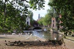 Bruges, Belgio, ponte di Beguinale fotografia stock libera da diritti