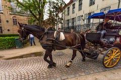 BRUGES, BELGIQUE - 10 JUIN 2014 : Chariot de cheval sur la rue de Bruges, Belgique Image libre de droits