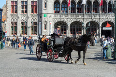 BRUGES BELGIUM/EUROPA, WRZESIEŃ 25, -: Koń i fracht w Ma Fotografia Royalty Free