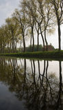 Bruges canal tree reflection. View of Trees in a canal near bruges belgium Royalty Free Stock Photos