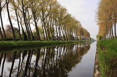 Bruges canal with tree reflection. View of Trees in a canal near bruges belgium Stock Photo